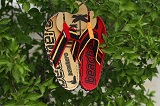 Flip Flops Beachers - The Beach Brown/Red vel 40